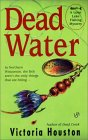 Dead Water book cover